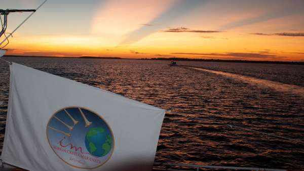 Sétima Missão Amazônia - Dia 04 - galerias/4899/thumbs/dsc1024.jpg