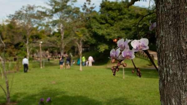 1º Unidos em Família no Maanaim de Vale do Paraíba, SP - galerias/4933/thumbs/formatfactory35.jpg