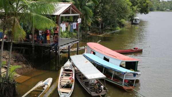 Oitava Missão Amazônia - Bagre - galerias/5023/thumbs/03.jpg