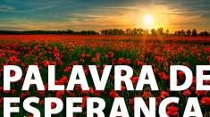 Salmos 112:7  - Uma Palavra de Esperança para sua vida